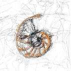 logo_disegno