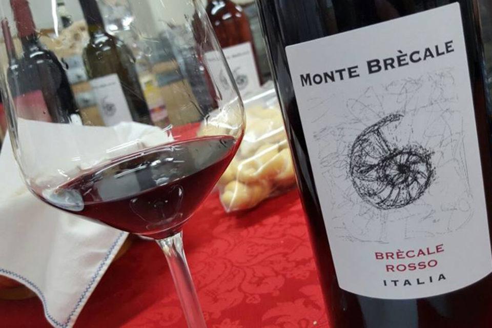 vino-Montebrecale