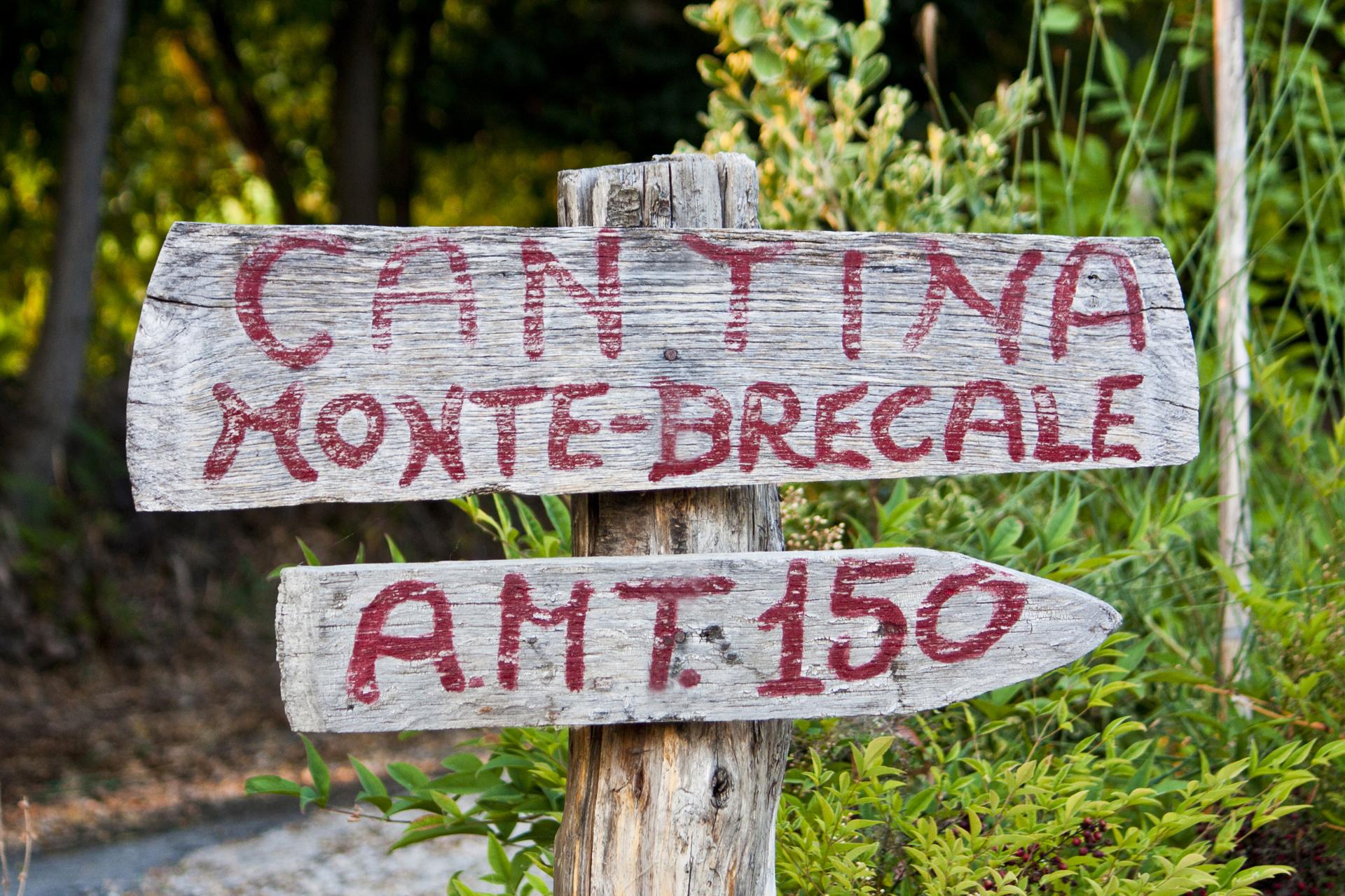 Monte Brècale
